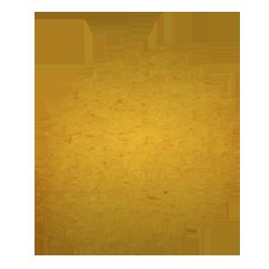 Saraste2012